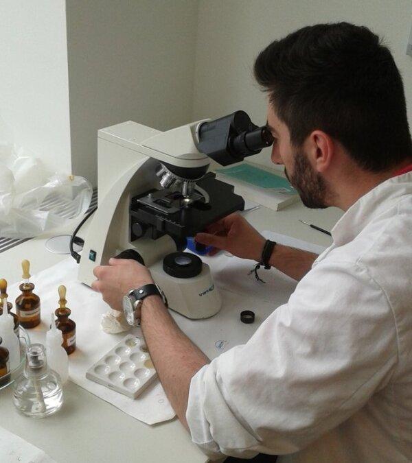 Mikroskopie im Praktikum